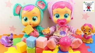 BEBÉS LLORONES Katie toma su Biberón y llora lágrimas de verdad - Juega con Bebé Llorón Lala