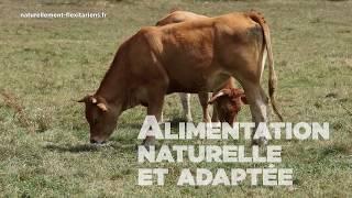 FILM ELEVAGE EN FRANCE - BIEN ETRE ANIMAL