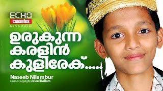 New Song.1- Naseeb Nilambur
