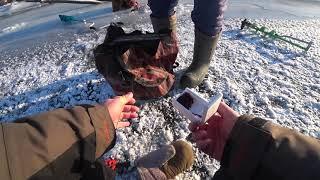Первая Рыбалка Зима 2019-2020 Татарстан Первый Лёд