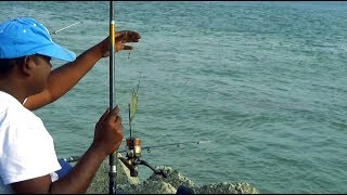 Best Prawn Fishing Videos From Padma River