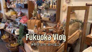 일본 브이로그 | 잡화점 쇼핑하고 한국에 택배보내기, …