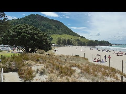 Scenes and Landscape Paintings from Mt Maunganui New Zealand