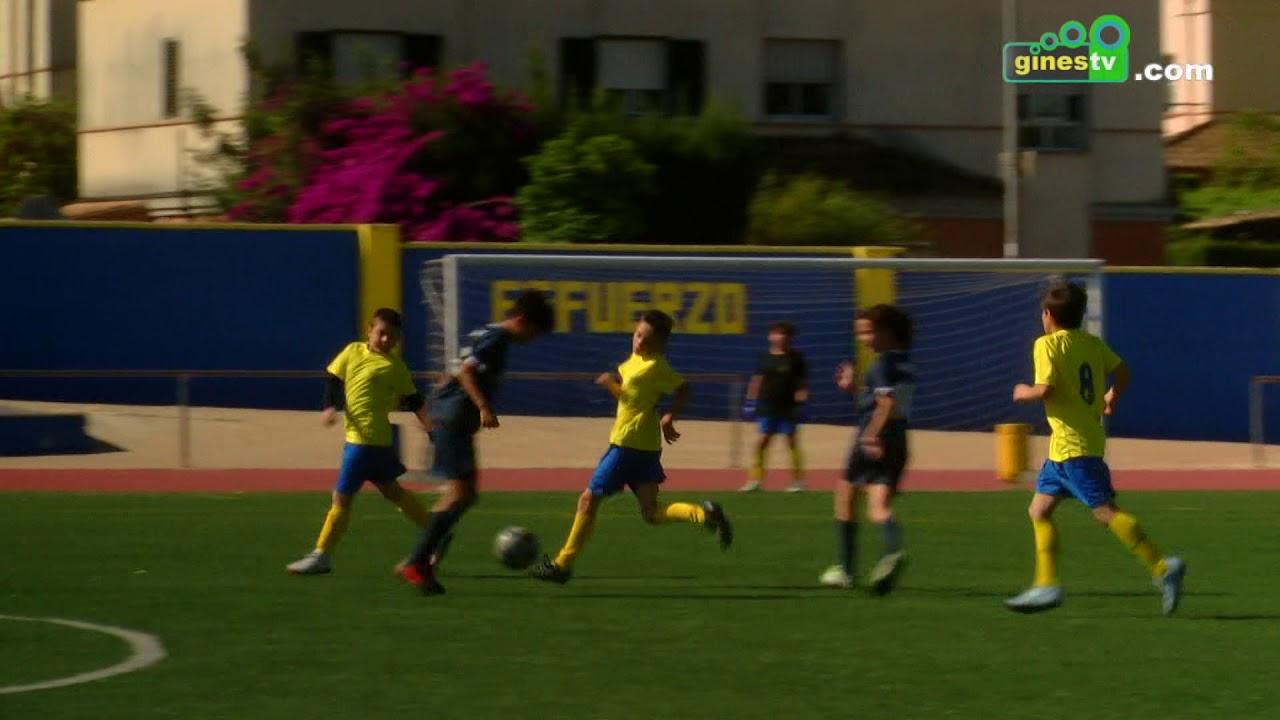 Gines acogió el quinto evento fin de liga 'Education Football League' de categoría alevín
