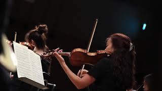 L.v. Beethoven - Symphony No.7 in A Major, Op.92 - 2.Allegretto / Solius Orchestra