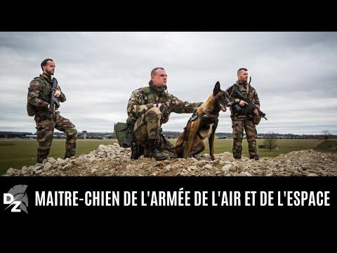 Les maîtres-chiens de l'armée de l'Air et de l'Espace