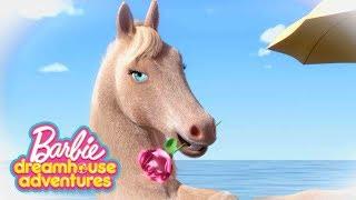 Il meglio di Barbie Dreamhouse Adventures ???? Cartoni Barbie | Barbie Italiano | In onda su Netflix