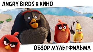 Angry Birds в кино – Обзор Мультфильма | BZEKE
