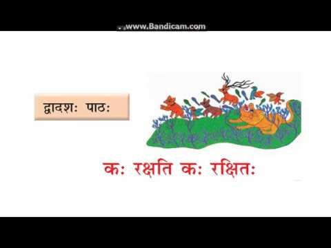 Class 8 sanskrit ch 12 कः रक्षति कः रक्षितः hindi translation and  explanation