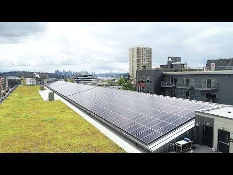 Audi Seattle/University Volkswagen goes solar