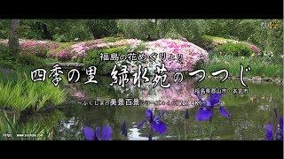 福島の花めぐりより Ver. 4K ~四季の里 緑水苑のつつじ~