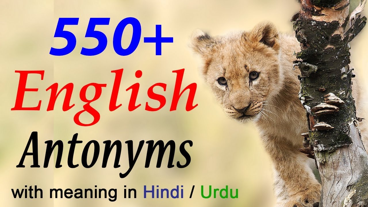 English Antonyms words list with meaning and examples in Hindi learn online