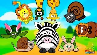 El carnaval de los animales - Cuentos de Carnaval - Cuentos infantiles