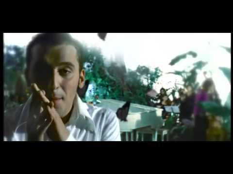 Cesare Cremonini - Vieni a Vedere Perchè (Video Ufficiale)