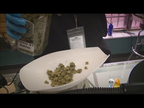 Prop. 64 Would Legalize Marijuana For Recreational Use