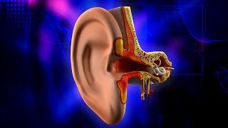 Çocuklarda Kulak Temizliği