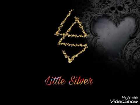 สถานะเฟสบุ๊ค - Little Silver (Official Audio)