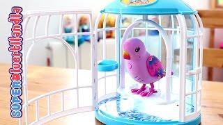 Pajarito parlanchín con su jaula (Little Live Pets) Pia, canta y repite lo que dices.