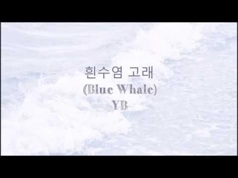 흰수염 고래  (Blue Whale)- YB  (Eng Sub|Han|Rom)