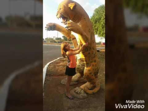 Fotos no Zoologico de Brasília