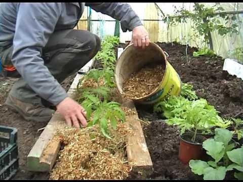 Que faire en avril au jardin faire les premiers paillages youtube - Que faire au jardin en avril ...