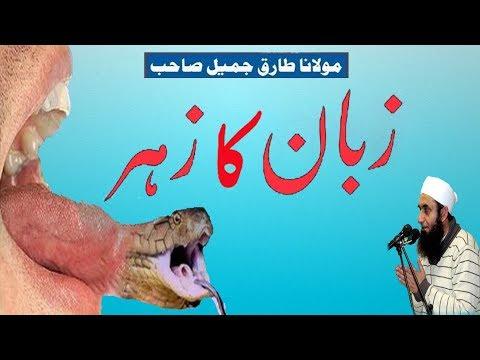 Download Zuban Ka Zahar By Molana Tari Jameel
