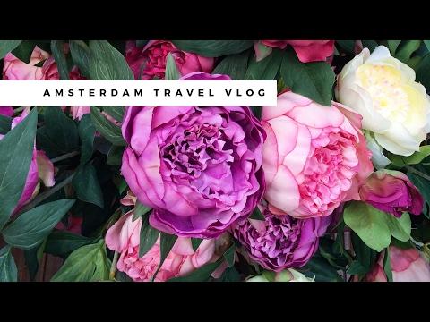 Amsterdam Netherlands Solo Travel Vlog ✈ Rijksmuseum, Heineken Experience, Bloemenmarkt