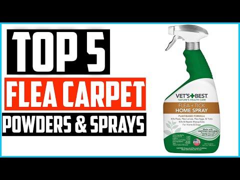 Top 5 Best Flea Carpet Powders & Sprays Review In 2020