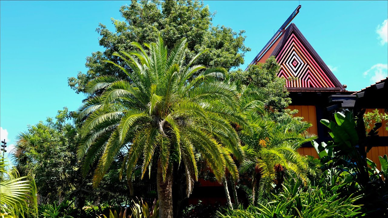 Relaxing Walk Around Disney's Polynesian Resort in 5K! Walt Disney World Orlando Florida 2020