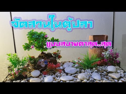 จัดสวนปลาทองง่ายๆEP3 Diy Byดาด้าจัดสวนในตู้ปลาง่ายโครตๆสิ่งจำเป็นสำหรับดอร์เมาส์
