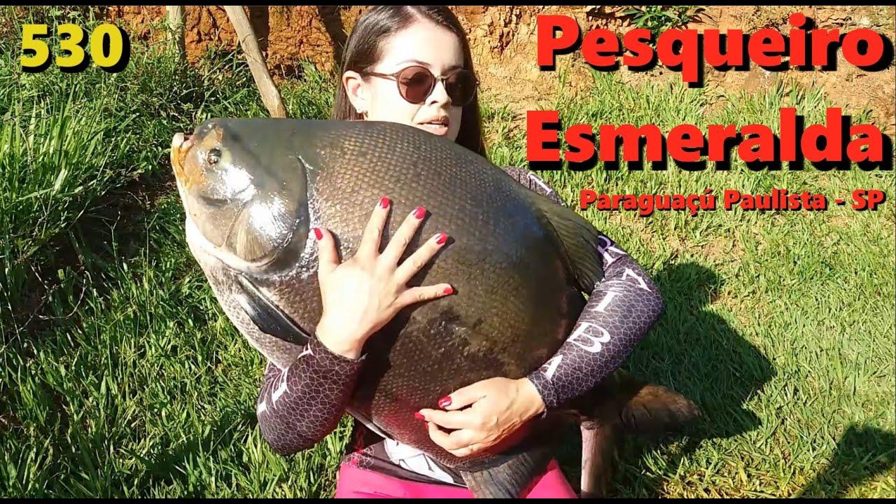 Esmeralda - Muitos peixes na ceva e um trintão no colo - Fishingtur na TV 530