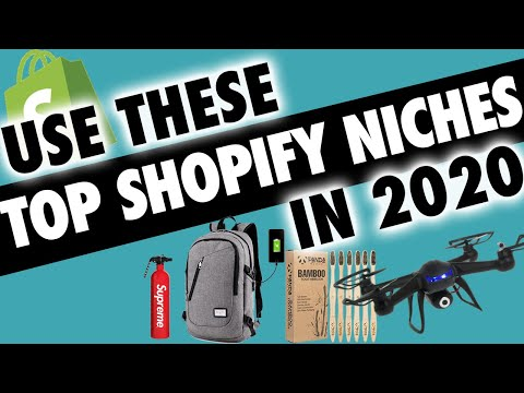 Which Dropshipping NICHES Will PROFIT in 2019?! thumbnail