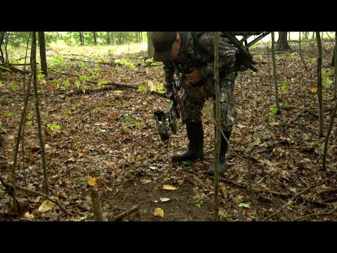 Beware Of Adding Trail Cams To Buck Scrapes