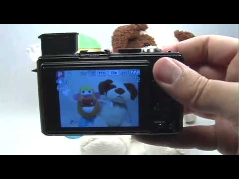 Panasonic DMC-LX3: Flash