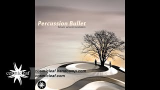 Percussion Bullet - Future Accommodation // ALBUM PREVIEW - Out 05 January 2015