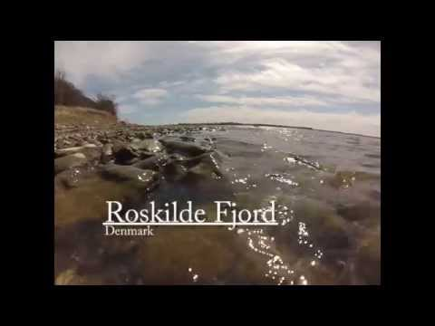 Seatrout fishing Roskilde Fjord