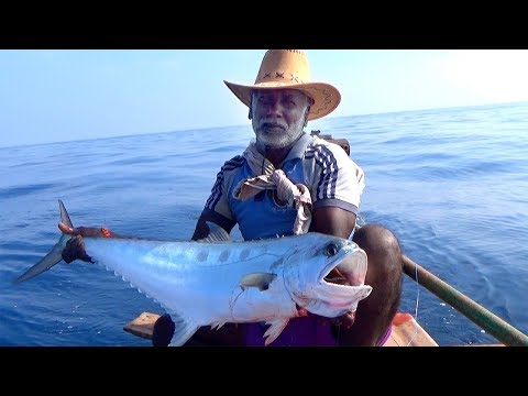 QUEEN FISH / KING FISH CATCHING AT OFFSHORE