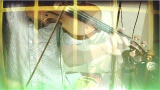 【Violin Cover】モノクローム / Monochrome (Star Driver)【Umidori】
