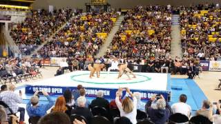 US Sumo Open 2016 - Mens Heavyweight FINAL - Byambajav (MON) vs Roy (USA)