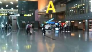 The global voyage/Doha airport