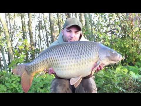 Carp Catchers Series 2 - FREE DVD from Bait-Tech