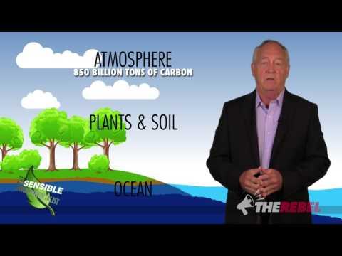 The TRUTH about carbon dioxide C02 Patrick Moore, 'K' Sensible Environmentalist