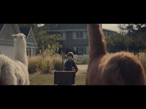 """Llamas and a Little Boy star in """"The Performance"""" - A holiday short film from Cost Plus World Market"""