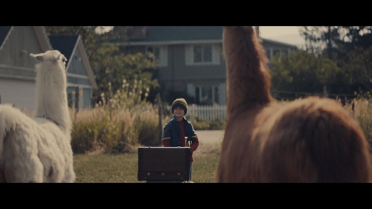 "Llamas and a Little Boy star in ""The Performance"" - A holiday short film from Cost Plus World Market - Llamas and a Little Boy star in ""The Performance"" - A holiday short film from Cost Plus World Market"