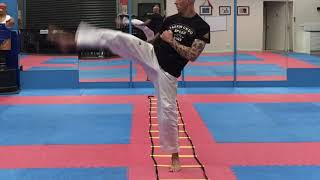 The BEST Martial Arts Agility Ladder Drills