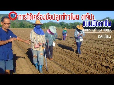 ราคา 600 บาท การใช้เครื่องปลูกข้าวโพดหรือแจ๊ป ผลิตโดยเกษตรกรไทย คุ้มค่า ราคาไม่แพง