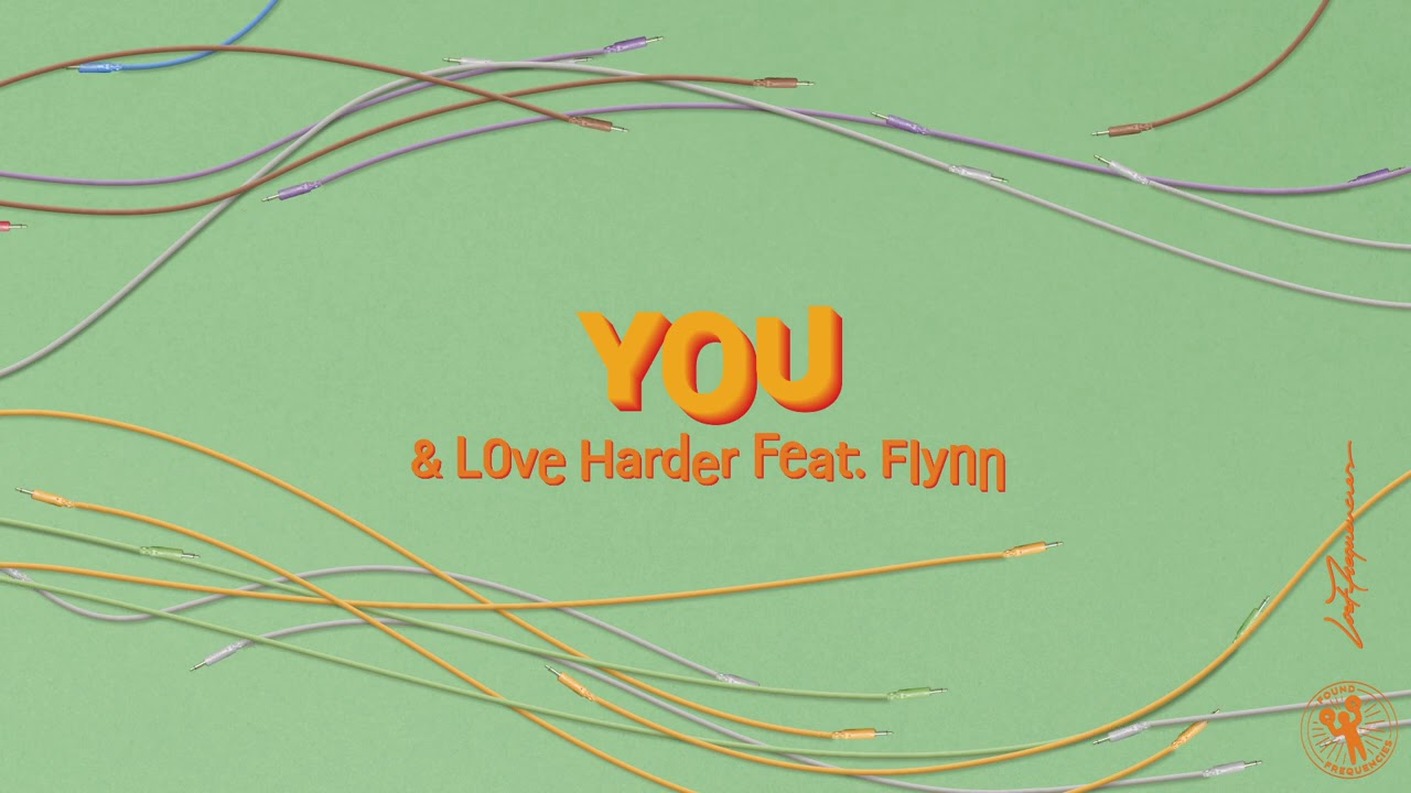 Lost Frequencies vs. Love Harder feat. Flynn - You
