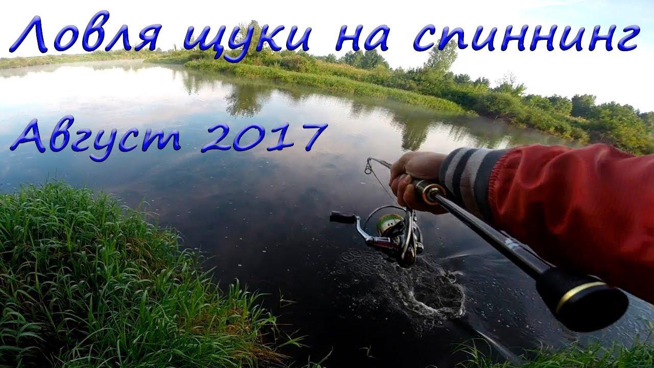 ловля щуки на спиннинг август видео