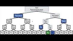 Bitcoin Internals: Verifying Merkle Roots using Merkle Proofs in JavaScript