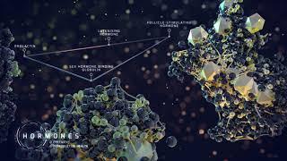 Clinical Diagnostics - The Future of Health